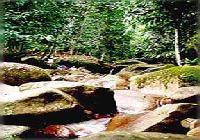Gunung Gading Park & Land Dayak Longhouse, Sarawak