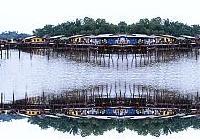 Kota Kinabalu Mengkabong Tour, Sabah