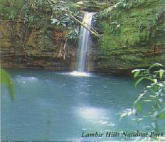 Lambir Hills Park, Sarawak Borneo Eco Tours